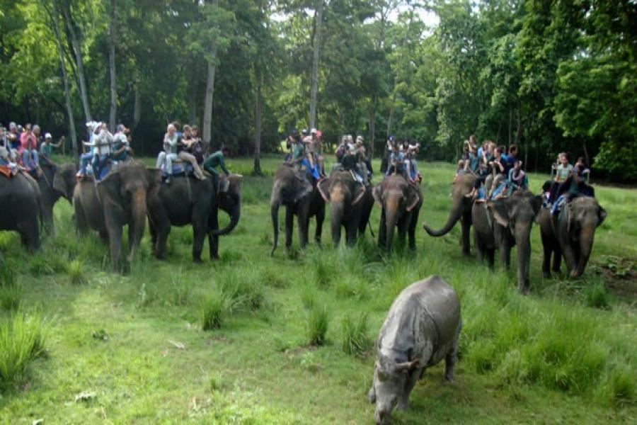 チトワン国立公園ツアー